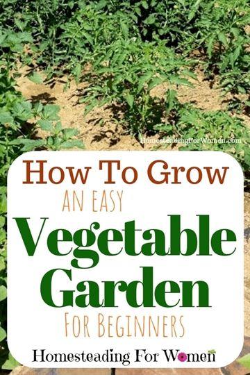 Organic Gardening In Pots Backyard Organic Gardening Youtube