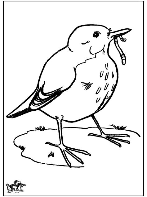 Blackbird Birds Disney Drawing Tutorial Love Bears All Things Black Bird