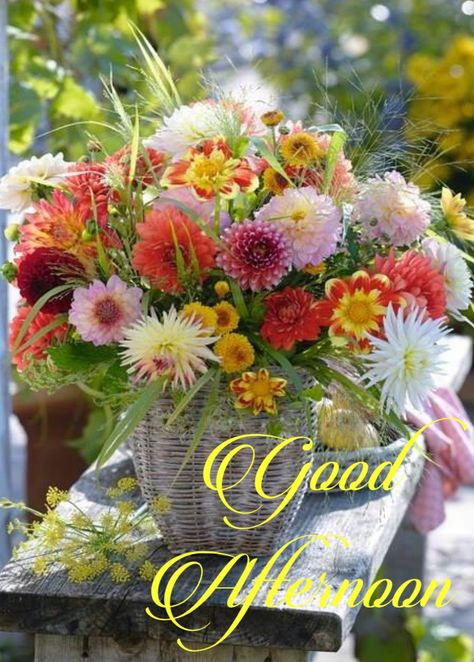 Good Afternoon Greetings Good Morning Flowers Good Afternoon Good Night Beautiful