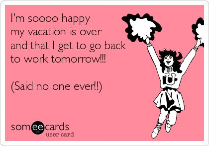 Best After A Vacation Funny Images On Pinterest Funny Work - 16 grumpy puppies who perfectly understand how you feel about going back to work after summer break
