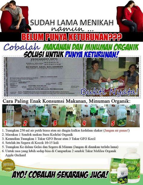 Penyembuhan Alami Solusi Punya Anak Dari Melilea Organik Di Surabaya Makanan Sehat Melilea Organic Surabaya Anak Kesehatan