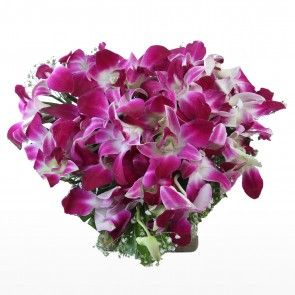 1 New Message In 2020 Purple Orchids Orchids Heart Shapes