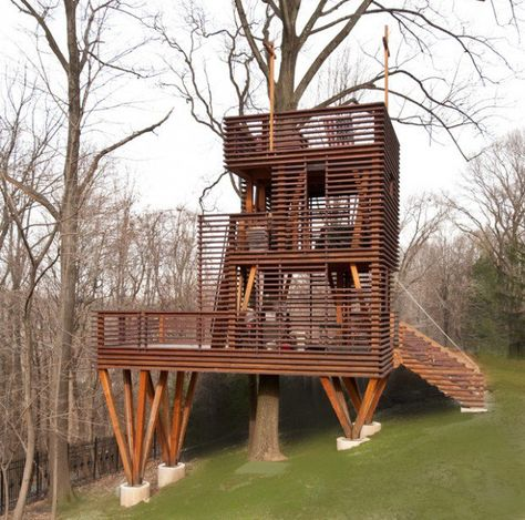 17 Amazing Tree House Design Ideas That Your Kids Will Love Ağaç