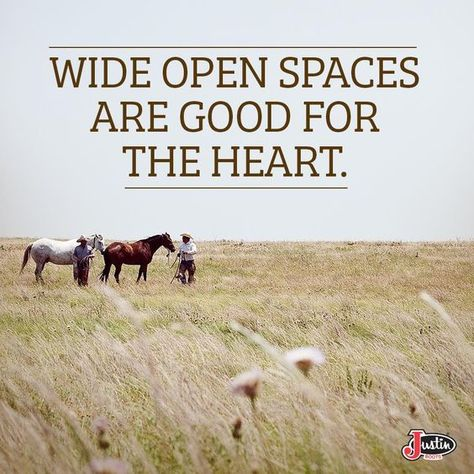 There's nothing like those country quotes that grandma and papa used to say.We are taking these inspirational quotes and remembering them when we need them. Western Quotes, Cowboy Quotes, Horse Quotes, Rodeo Quotes, Equine Quotes, Equestrian Quotes, Thats The Way, That Way, Farm Quotes