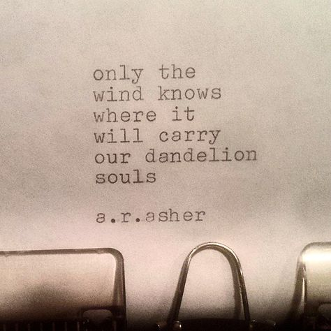 Only the wind knows where it will carry our dandelion souls..