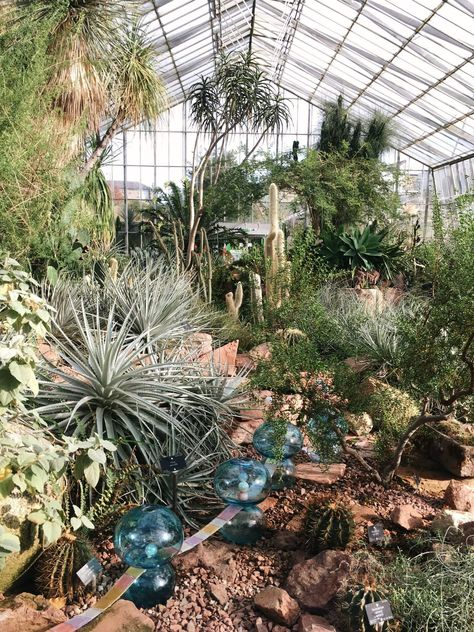 things to do in edinburgh: the botanic gardens