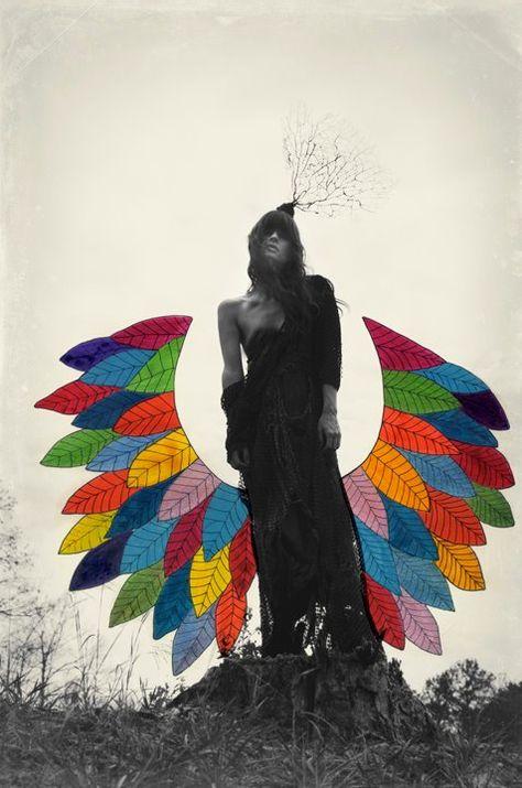 Strangely psychedelic   http://www.alexandravalenti.com/