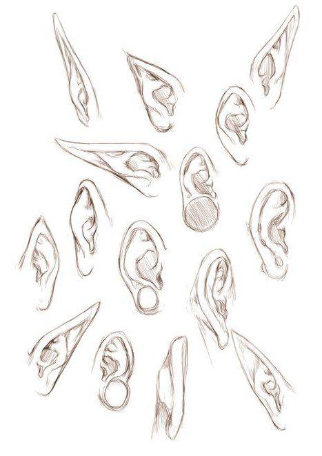 Ear Drawing Reference Zeichnen Von Referenzen Und Ressourcen Spaten Es Face Drawing Pencil Drawing Zeichnungen Von Menschen Tipps Furs Zeichnen Manga Augen Zeichnen