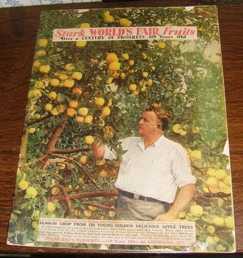 Stark Nursery Classic Colorful 1935 Tree Catalog, Louisiana, Missouri by OldNorthStreetGarden on Etsy