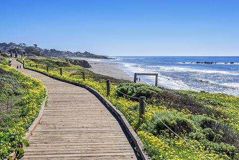 San Luis Obispo: California's Secret Beachside Wine Region