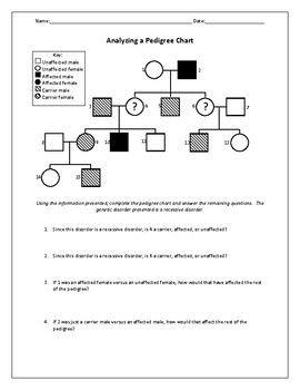 Biology Genetics Worksheets Biology Worksheet Pedigree Chart Biology