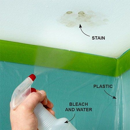 How To Get Rid Of Mould On Your Ceiling The Diy Life Mildew Stains Get Rid Of Mold Mold In Bathroom