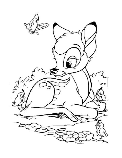 Coloring Pages Whitetail Deer Whitetail Deer Coloring Page