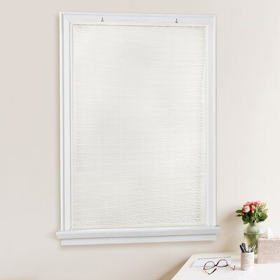 Bayou Breeze Oval Cordless Semi Sheer Roll Up Shade Colour White Blind Size 30 W X 72 L In 2020 Shades Blinds Vinyl Blinds Horizontal Blinds