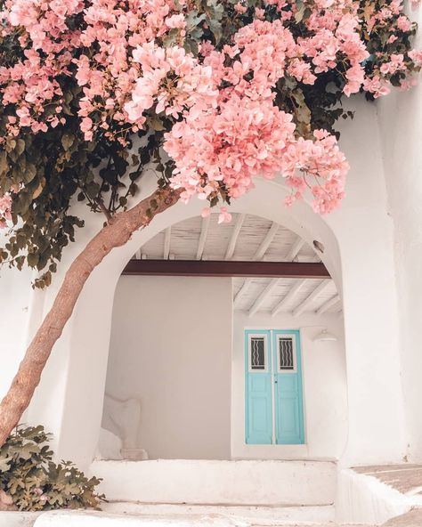 Paros, Greece by Polina Paraskevopoulou Photo Wall Collage, Picture Wall, Fond Design, Flower Aesthetic, Pink Aesthetic, Beautiful Places To Travel, Bougainvillea, Travel Aesthetic, Aesthetic Pictures