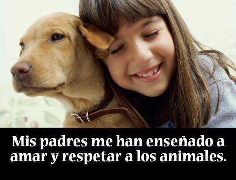 Mis padres me han enseñado a amar y respetar a los animales