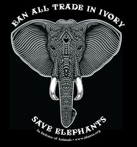 Damn right!!! Wtf do you need ivory for??? Elephants have it because its a necessity...if you needed it it would grow from your face!
