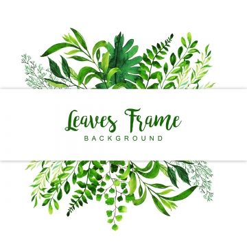 2020 的 Leaves Background Color Colorful Png And Vector With