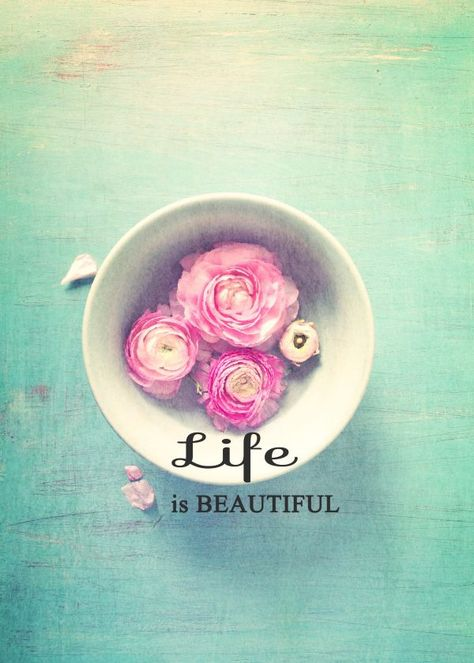 Life is beautiful when you open yourself up to it.