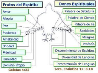 Frutos Y Dones Del Espíritu Santo Dones Del Espiritu Dones Espirituales Espíritu Santo