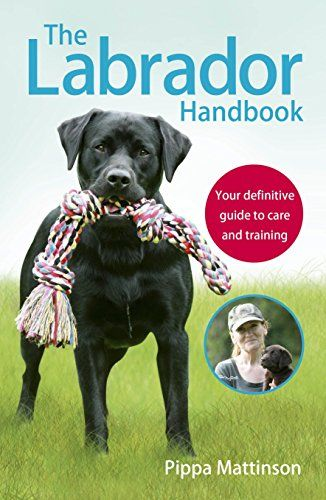 The Labrador Handbook Your Definitive Guide To Care And Https