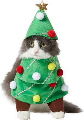 Frisco Front Walking Christmas Tree Dog Cat Costume X Small Chewy Com In 2020 Christmas Tree Dog Cute Christmas Tree Cat Costumes