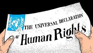 Pin By Lucky Solanki On Lucky Human Human Rights Basic