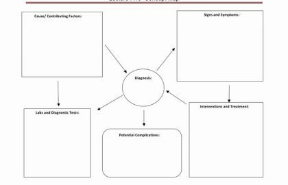 Nursing Concept Map Template And Free Concept Map Template Awesome