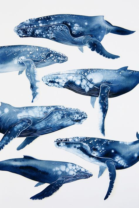 Image of A Menagerie of Humpback Whales Print