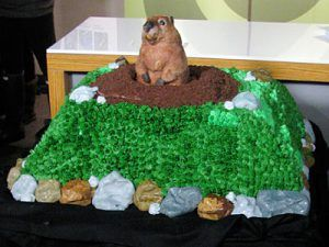 Groundhog Day Cake Idea to go with Jill's theme