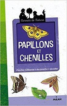 papillon livre pdf gratuit