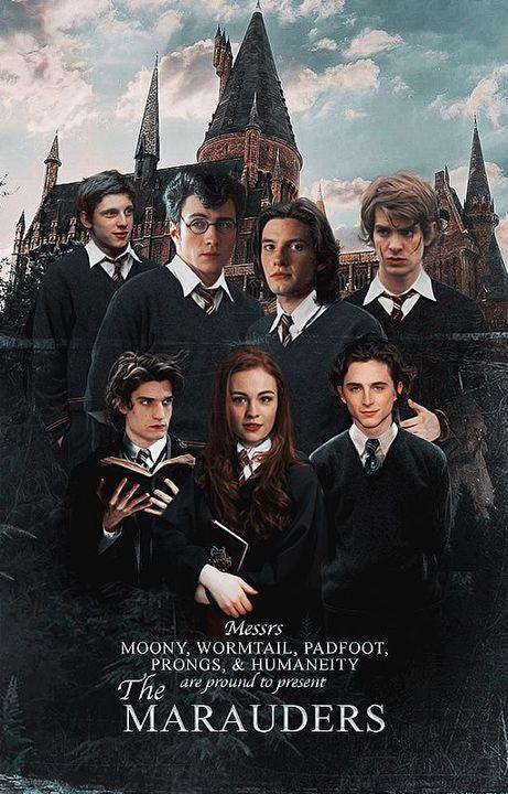 The Marauders, Harry Potter Marauders, Harry Potter Cast, Harry Potter Fan Art, Harry Potter Universal, Harry Potter Fandom, Posters Harry Potter, Harry Potter Pictures, Harry Potter Characters