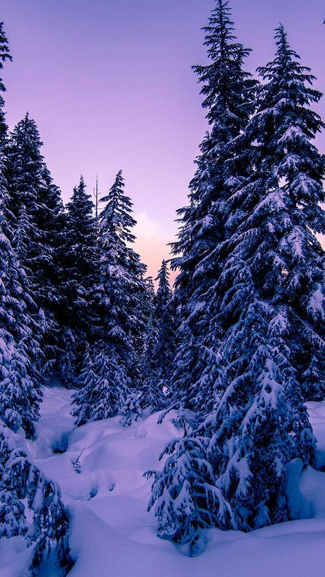 13 X Winter Landscapes Iphone Wallpaper Collection Preppy Wallpapers Iphone Wallpaper Winter Winter Landscape Winter Wallpaper Awesome snow wallpaper for iphone x