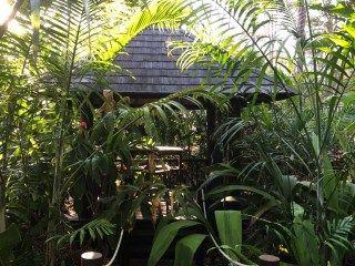Beautiful Bali Style Garden In Karalee Ipswich In 2020 Shade