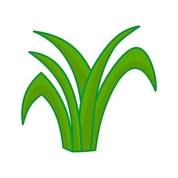 Gambar Rumput Daun Vektor Kartun Ilustrasi Desain Grafis Clipart Rumput Ikon Kartun Ikon Grafik Png Dan Vektor Untuk Muat Turun Percuma Ilustrasi Desain Grafis Ilustrasi Rumput