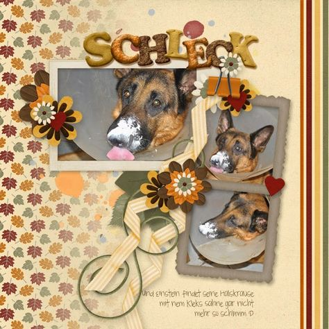 GiveThanks Papers by CorneliaDesigns http://store.gingerscraps.net/Give-Thanks-Papers-by-Cornelia-Designs.html CookieMonster Alpha by BrightIdeas http://store.gingerscraps.net/Cookie-Monster-Alpha-by-Bright-Ideas.html WoofWoof Elements by BlueHeartScraps http://store.gingerscraps.net/Woof-Woof-Element-Pack.html Photos by kpmelly