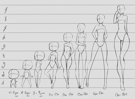 Different Body Proportions For Female Characters Anime Drawings Drawing People Sketches