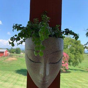 Vertical Planter Planter Headplanters Concrete Planter Etsy In 2020 Face Planters Head Planters Wall Planter