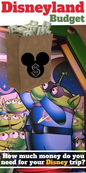 How Much Money Should You Bring To Disneyland
