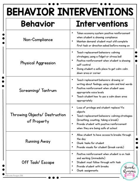 Behavior Interventions {Behavior Binder}