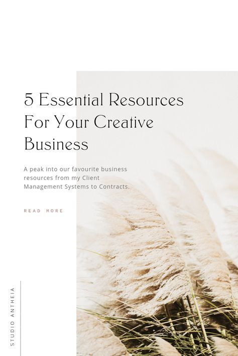 My 5 Favorite Creative Business Resources — Studio Antheia