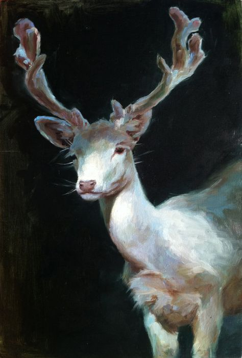 White Stag II - Oil Painting - Limited Edition Print - This is a limited edition fine art giclee print of one of my original oil paintings. Caravaggio, Street Art, Albino, Wildlife Art, Limited Edition Prints, Pet Portraits, Dragon Age, Art Inspo, Illustration Art