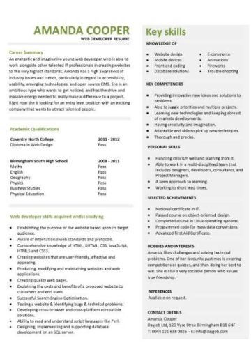 Web Developer Resume Example Cv Designer Template