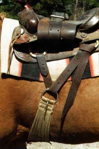 Center-firing your Cinch - COWBOY SHOWCASE Barrel Racing Saddles, Barrel Racing Horses, Barrel Horse, Horse Saddles, Horse Camp, Horse Gear, Horses And Dogs, Show Horses, Western Saddle Pads
