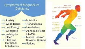 12 Foods Which Increase Magnesium And Prevent High Blood Pressure