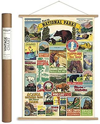 Amazon Com Cavallini Papers Co Inc Vpk Np Caviling Vintage National Parks Hanging Poster Kit Vintage Wal In 2020 Hanging Posters Vintage Wall Decor Vintage Walls