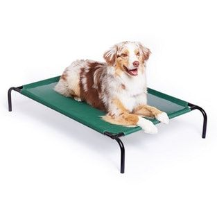Amazon Com 2pet Elevated Cooling Pet Bed Pet Cot Dog Bed With