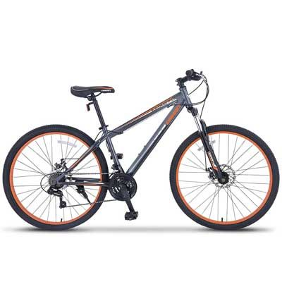 Top 10 Best Mountain Bikes In 2020 Reviews With Images Mens