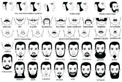 Beard Styles Chart In 2020 Beard No Mustache Mens Facial Hair Styles Beard Names