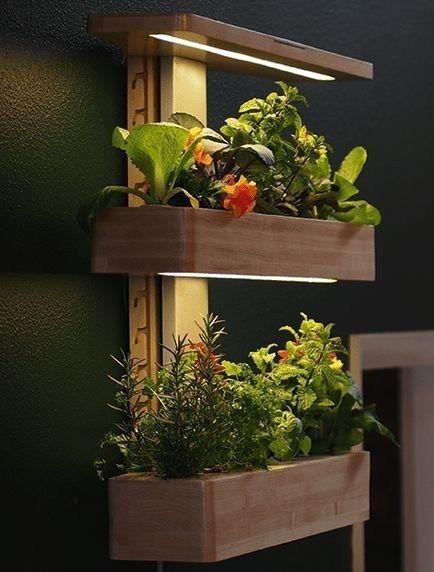 Indoor Gardening Wall House Plants In 2020 Vertical Garden Design Vertical Garden Plant Decor